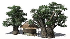 Thatched hut among trees -  on white background Stock Photography
