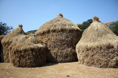 Thatched Hutments Royalty Free Stock Photo