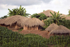 Thatched huts Royalty Free Stock Photography