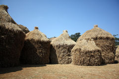 Thatched Huts Royalty Free Stock Photo