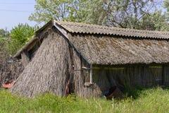 Thatched koja Arkivbild