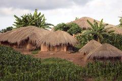 thatched kojor Royaltyfri Fotografi