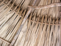 Thatched Roof Stock Photography