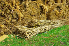 Thatched roof Royalty Free Stock Image