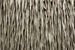 Thatched Roof Royalty Free Stock Photo