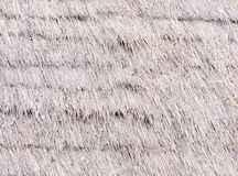 Thatched roof Stock Images