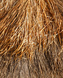 Thatched roof background or texture Royalty Free Stock Images
