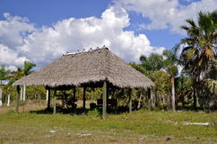 Thatched Roof Chickee Hut Royalty Free Stock Photos