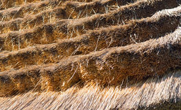 Thatched roof close up Royalty Free Stock Image