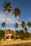 Thatched roof cottage on beach-Donsol,Philippines Stock Photo