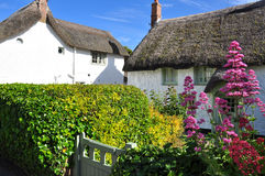 Thatched roof cottage. Cornwall, England, UK. Traditional thatched roof cottages and garden in Cornwall, England, Britain stock photos