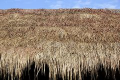 Thatched roof of a cottage made from dry grass Royalty Free Stock Photos
