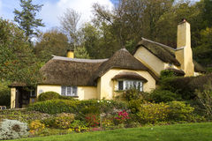 Thatched roof cottage in Selworthy. Village Somerset Stock Photography