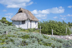 Thatched roof house royalty free stock image
