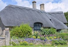 Thatched roof house with garden in bloom in idyllic english village . Old traditional English limestone cottage with thatched roof, big window, colourful Royalty Free Stock Photography