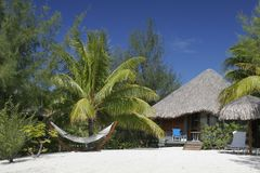 Thatched Roof Hut and Hammock. In the romantic south seas, on a white sand beach, a thatched roof bungalow and  rope hammock are surrounded by palm trees under a Royalty Free Stock Images