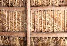Thatched Roof - Inside. Inside of roof made of palm fronds. To inspector - this is a resubmission after exposure correction stock photo