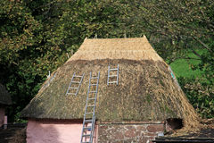 Thatched Roof. New thatch on a roof Stock Image