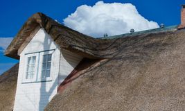 Thatched roof on the North Sea coast in closeup.  stock photo