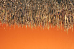 Thatched roof and orange wall. Thatched palapa roof hangs over orange wall in Mexico Royalty Free Stock Image