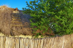 Thatched roof. Rural traditional fence and roof of cane in Danube Delta - landmark attraction in Romania Royalty Free Stock Image