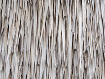 Thatched roof texture background Stock Images