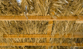 Thatched roof. On wooden planks photographed from below Royalty Free Stock Images