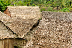 Thatched roofs of traditional houses in Amazonas Stock Photos