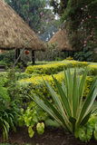 Thatched Shelters in Rwanda Royalty Free Stock Photo