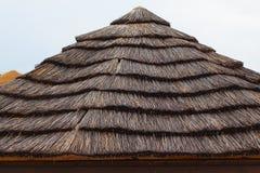 thatched tak Royaltyfria Foton