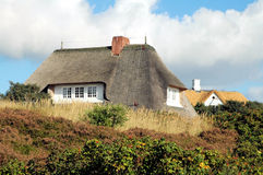 thatched tak för 3 hus arkivbild