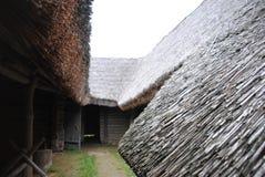 thatched tak Sikt från gården Royaltyfria Bilder