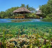 Tropical hut with colorful coral reef underwater. A thatched tropical hut over the water with a colorful coral reef underwater, Caribbean sea Stock Photos