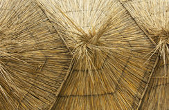 Thatched umbrellas on the beach Royalty Free Stock Image