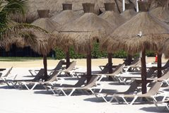 Thatched umbrellas and deckchairs on a Mexican beach Stock Photo