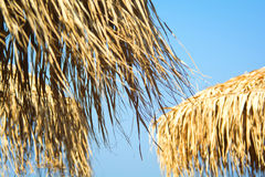 Thatched umbrellas Royalty Free Stock Images