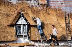 thatchers Stockbilder