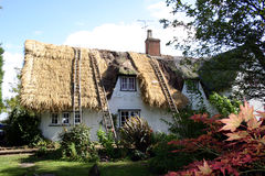 Thatching Stock Images