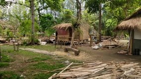 Thatching in northetn Thailand stock photo