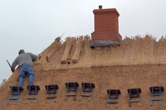 Thatching the roof Stock Photography
