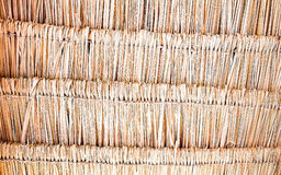 Thatching roof texture Stock Images