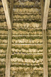 Thathed roof Stock Photography