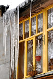 Thaw. Icicles against a wooden window stock image