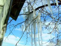 Thaw big icicles royalty free stock photography