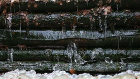 Thaw and falling drops of water 2 stock footage