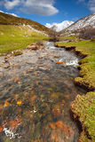 Thaw river. In the mountain royalty free stock photography