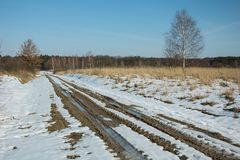 Thaw on the road to the forest and clear sky. Thaw on the road to the forest and clear blue sky stock image