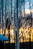 The Thaw Stock Photography