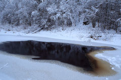 Thawed patch on ice river in the forest. Stock Images