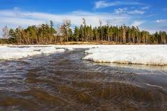 Thawing da mola do gelo sobre no rio em Sibéria Fotos de Stock